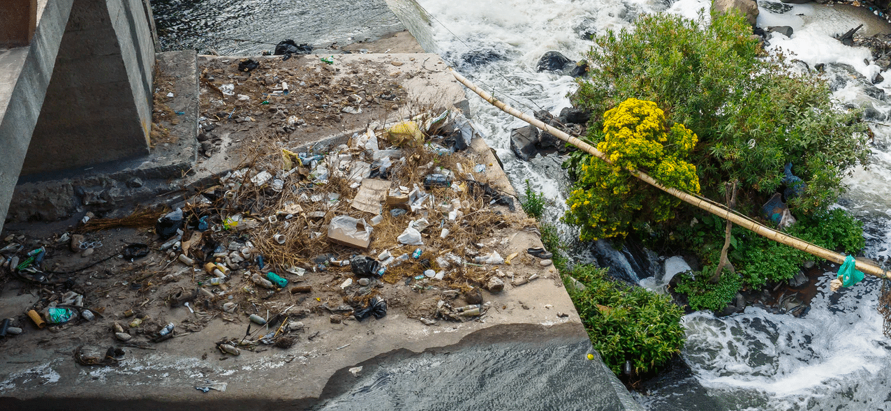 water bottle trash in nature